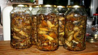 Smażone grzyby do słoików, przetwory