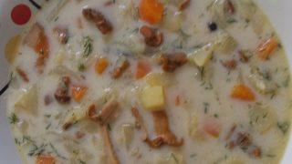 Zupa z kurek i młodej kapusty