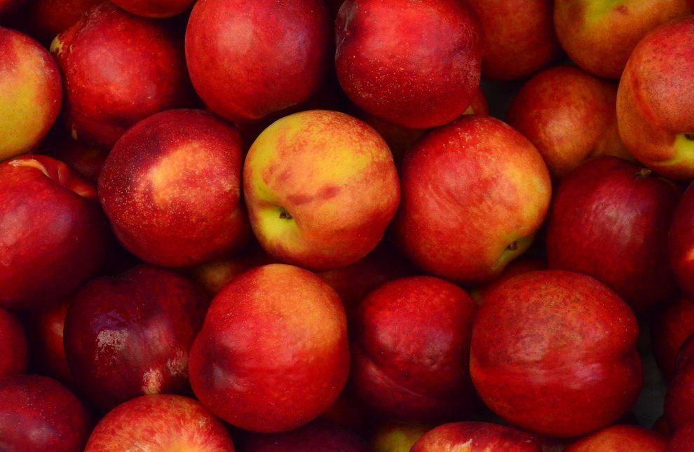 Jabłka do jabłecznika - jakie wybrać